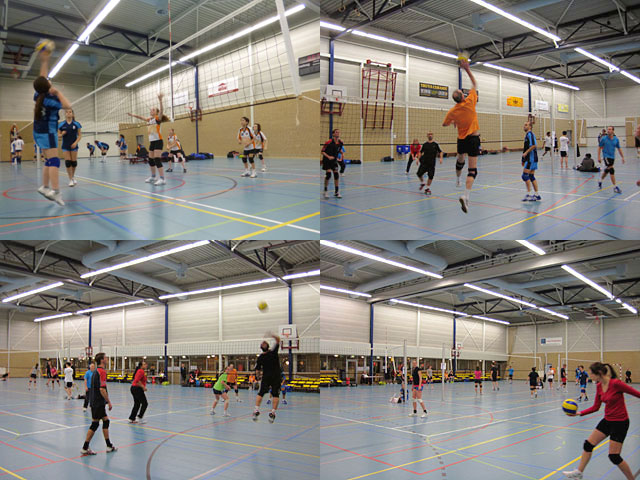volleyball rotterdam west